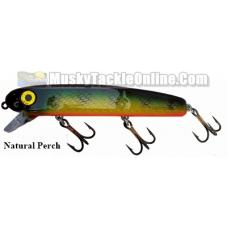 Bucher Baby Shallow Raider